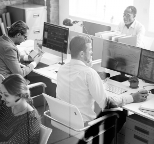 An office team working at computers